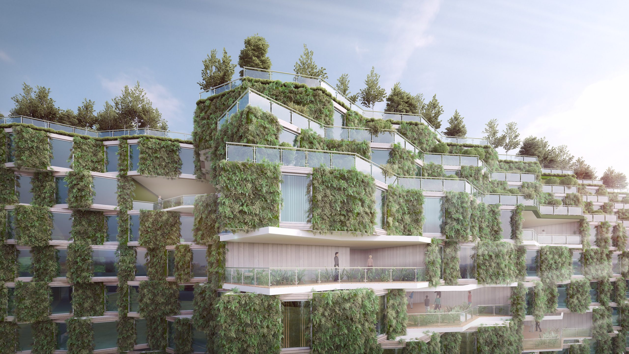 Boxmoor-Forest-Plus-12-storey-view-4-scaled